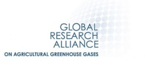 Global-Research-Alliance-on-Agricultural-Greenhouse-Gases-GRA-Henk-van-der-Mheen_inra_image.jpg